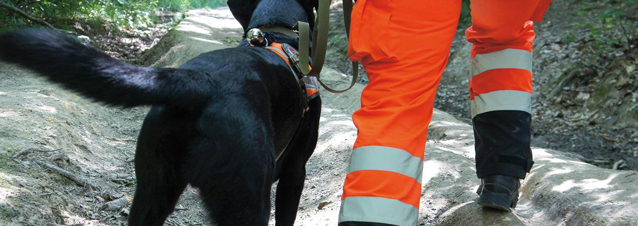 Rettungshunde_Fildern_Slider7