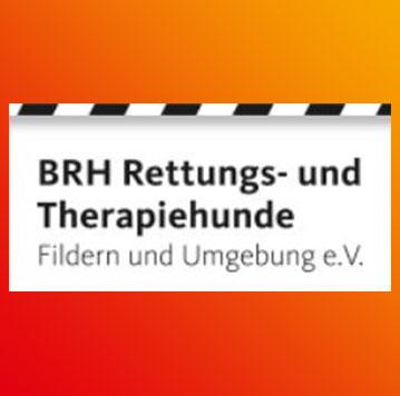 Logo BRH Fildern